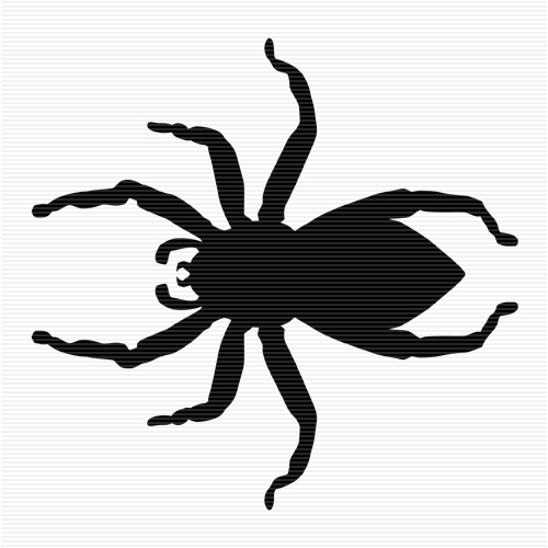 Jumping Spider clipart #8, Download drawings