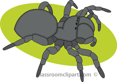 Jumping Spider clipart #15, Download drawings