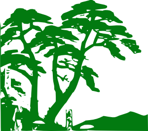 Jungle clipart #7, Download drawings