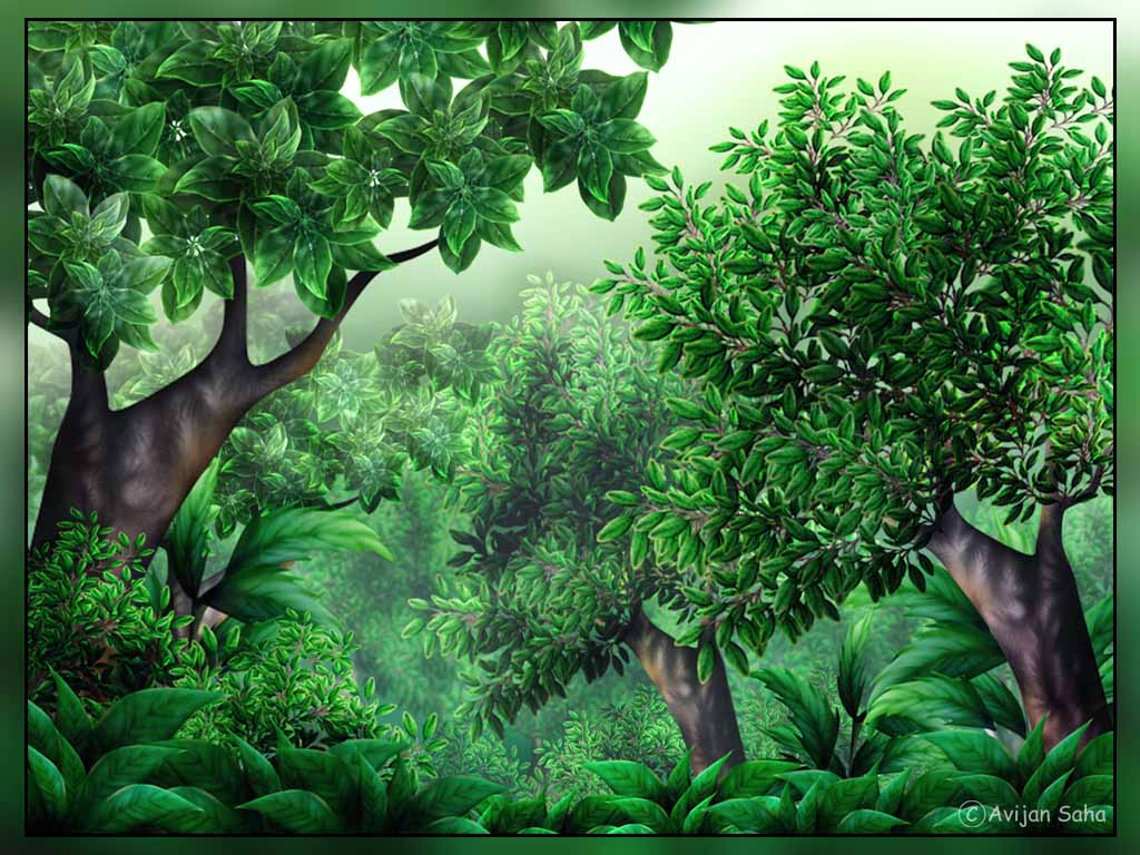 Jungle clipart #5, Download drawings