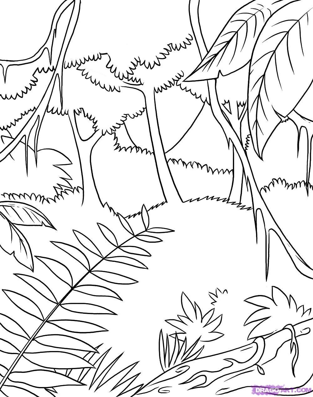 Jungle coloring #10, Download drawings