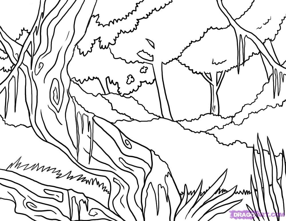 Jungle coloring #18, Download drawings