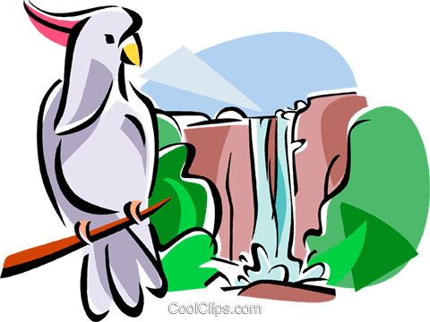 Kakadu clipart #2, Download drawings