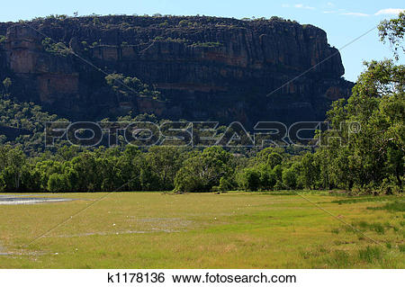Kakadu National Park clipart #8, Download drawings