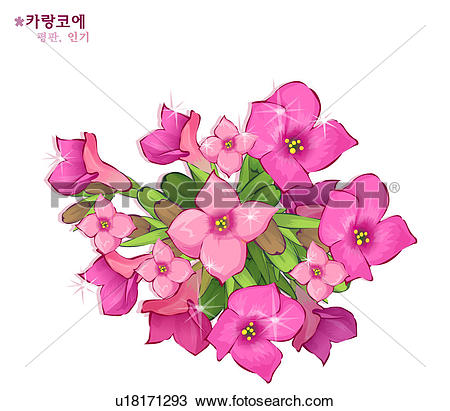 Kalanchoe clipart #9, Download drawings