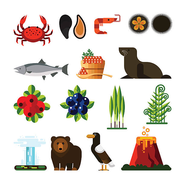 Kamchatka clipart #2, Download drawings