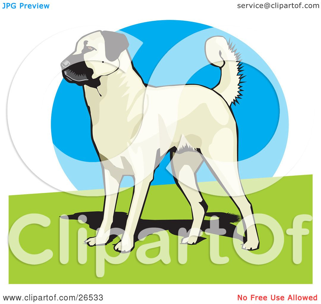 Kangal Dog clipart #7, Download drawings