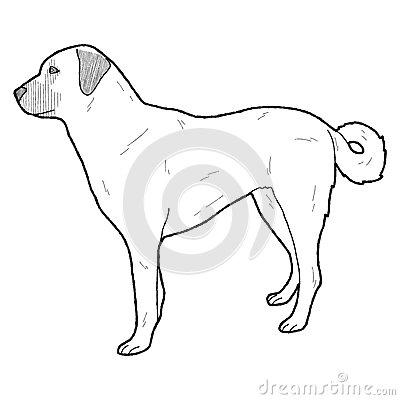Kangal Dog clipart #11, Download drawings