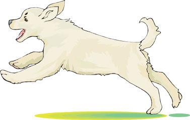 Kangal Dog clipart #8, Download drawings