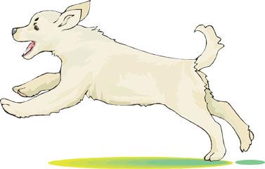 Kangal Dog clipart #8, Download drawings