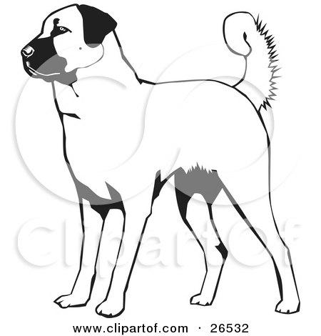 Kangal Dog clipart #3, Download drawings