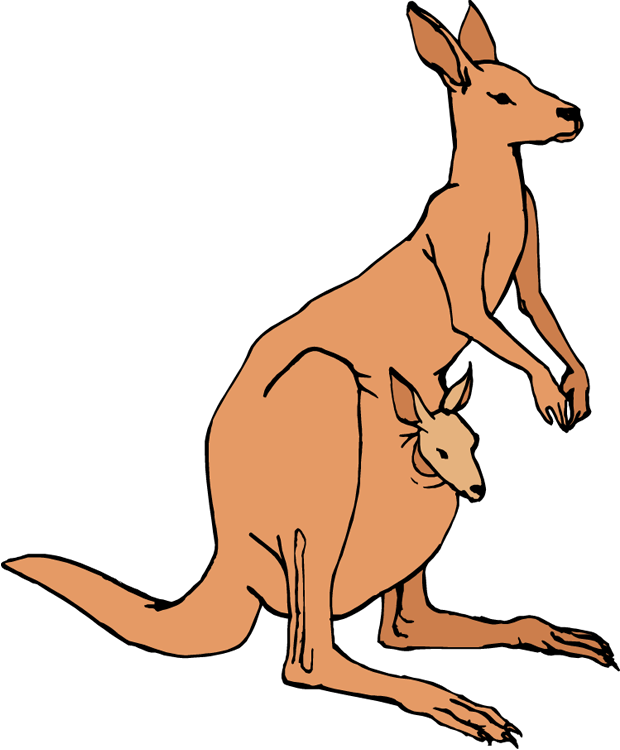 Tree Kangaroo clipart #6, Download drawings