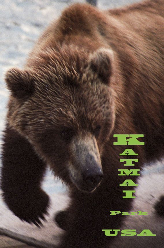 Katmai National Park coloring #17, Download drawings