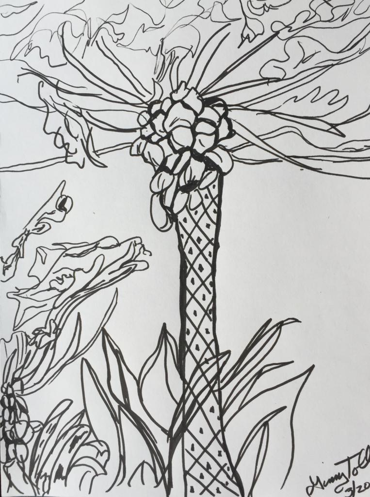 Kauai coloring #9, Download drawings