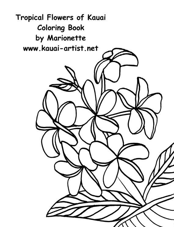 Kauai coloring #1, Download drawings