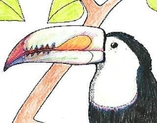 Keel-billed Toucan coloring #7, Download drawings