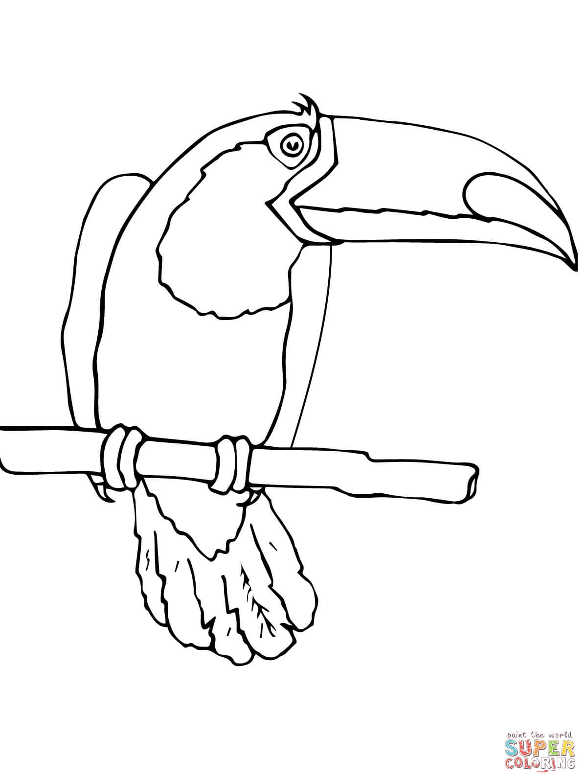 Keel-billed Toucan coloring #6, Download drawings