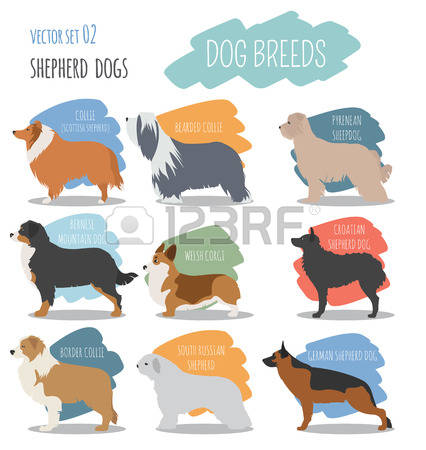 Kelpie clipart #6, Download drawings