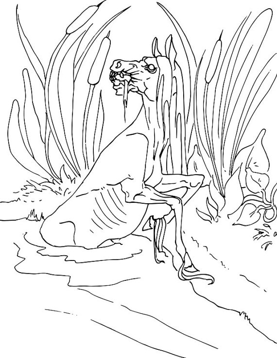 Kelpie coloring #12, Download drawings