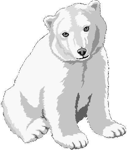 Kermode Bear clipart #7, Download drawings