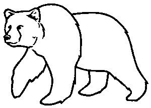 Kermode Bear clipart #1, Download drawings