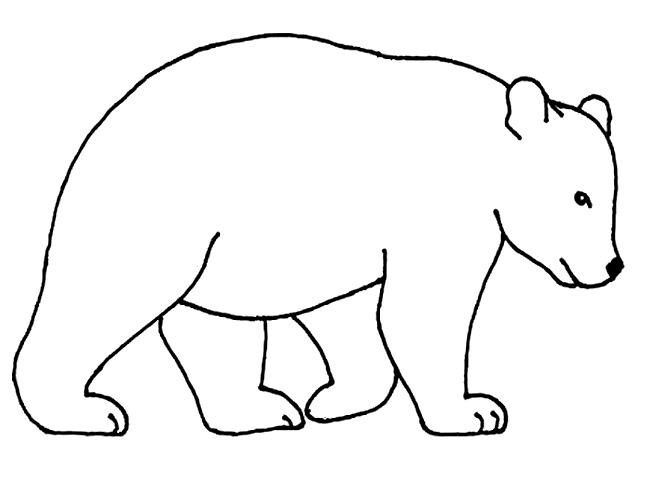 Kermode Bear clipart #7, Download drawings