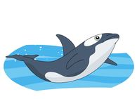 Killer Whale clipart #10, Download drawings
