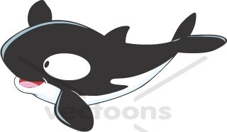 Killer Whale clipart #15, Download drawings