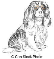 King Charles Spaniel clipart #14, Download drawings
