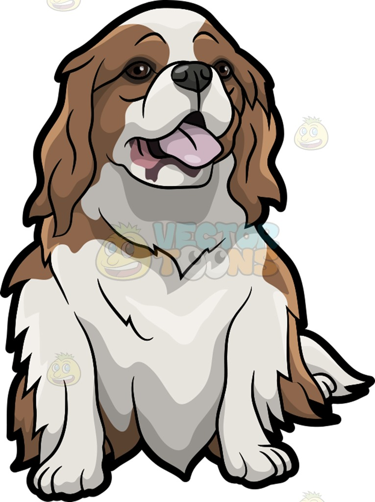 King Charles Spaniel clipart #18, Download drawings