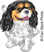 King Charles Spaniel clipart #12, Download drawings