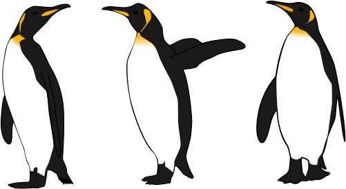 King Emperor Penguins clipart #11, Download drawings