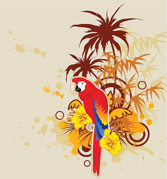 King Parrot clipart #14, Download drawings