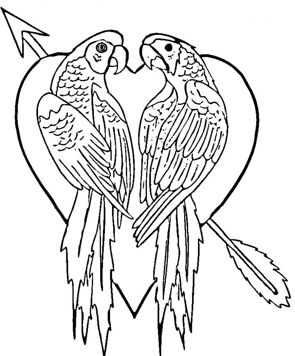 King Parrot coloring #11, Download drawings