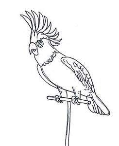 King Parrot coloring #9, Download drawings