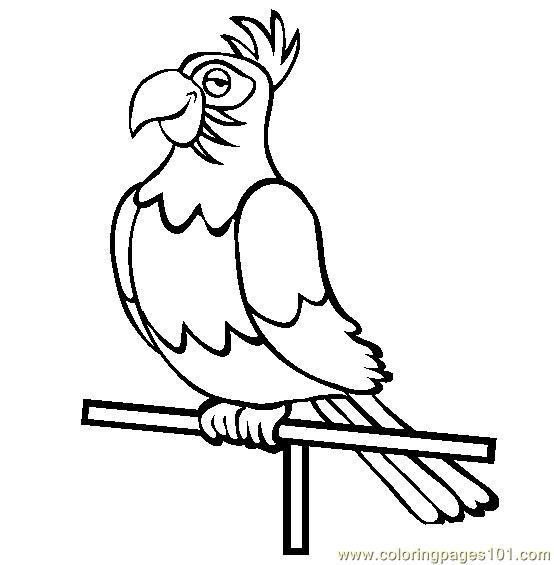 King Parrot coloring #7, Download drawings