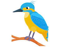 Kingfisher clipart #3, Download drawings