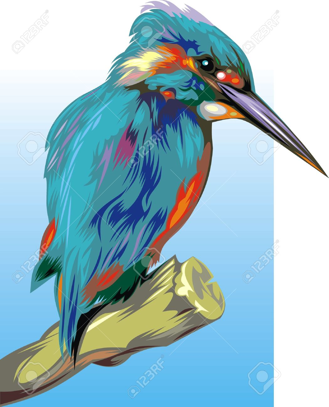 Kingfisher clipart #4, Download drawings