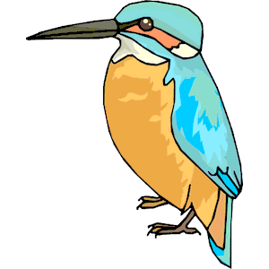 Kingfisher clipart #19, Download drawings