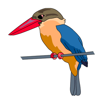 Kingfisher clipart #12, Download drawings
