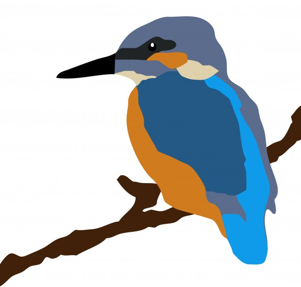 Kingfisher clipart #9, Download drawings