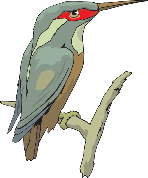 Kingfisher svg #16, Download drawings