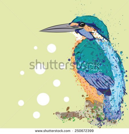 Kingfisher svg #1, Download drawings