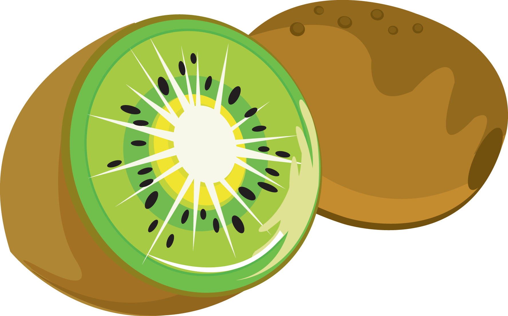 Kiwi clipart #18, Download drawings