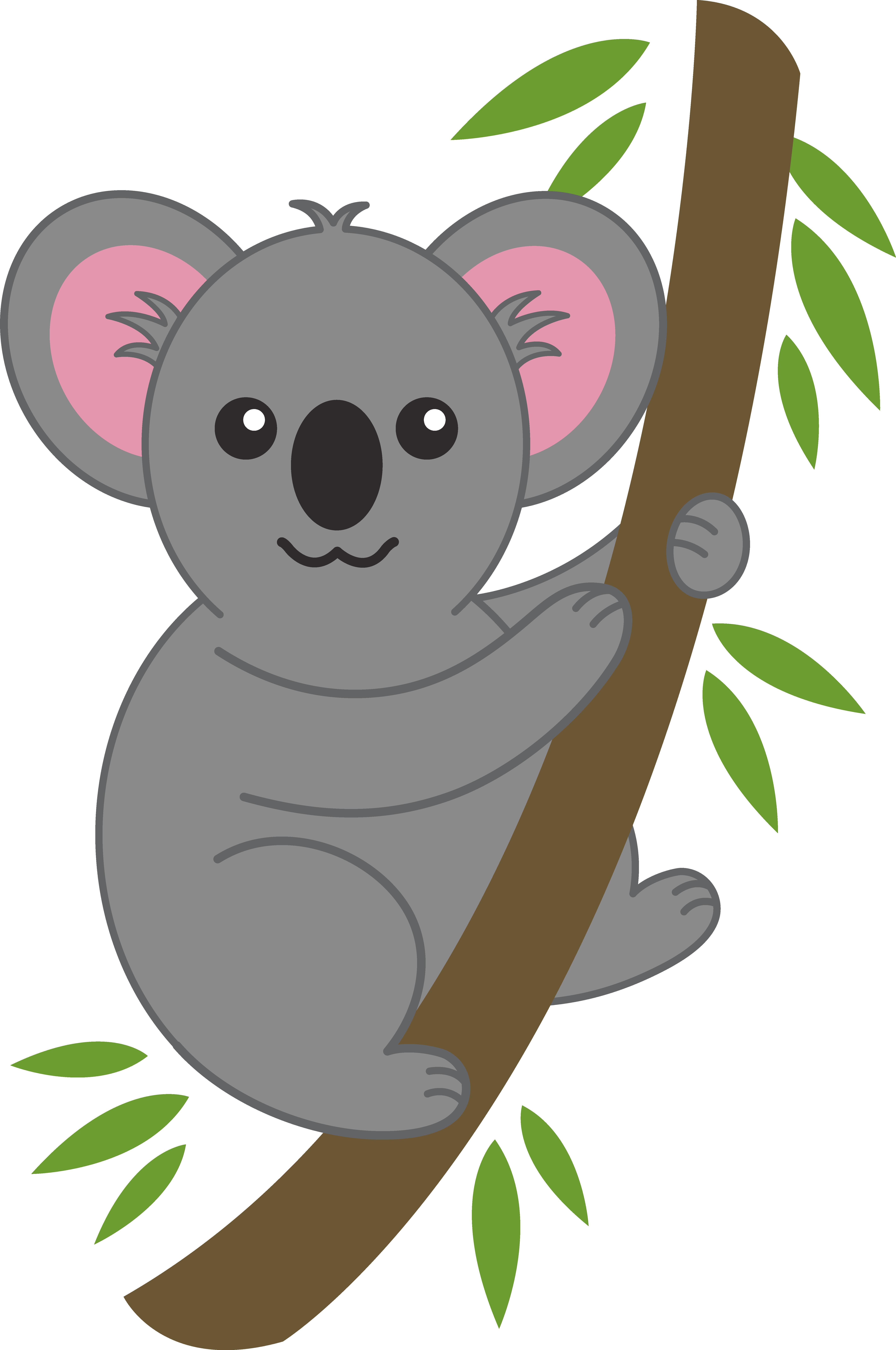 Koala Bear clipart #1, Download drawings