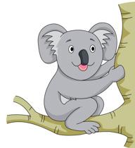 Koala clipart #10, Download drawings