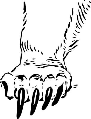 Kodiak Bear clipart #9, Download drawings