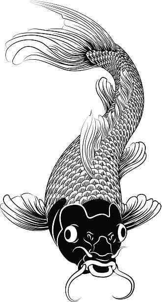 Koi Carp clipart #11, Download drawings