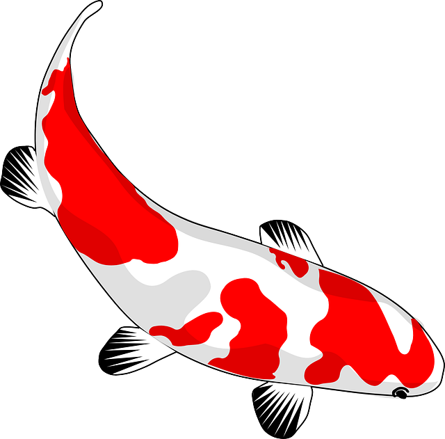 Koi Fish svg #3, Download drawings