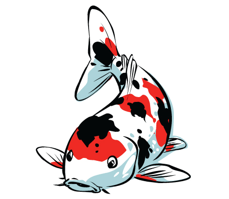 Koi clipart #4, Download drawings